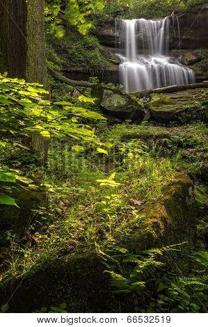 Quakertown Falls