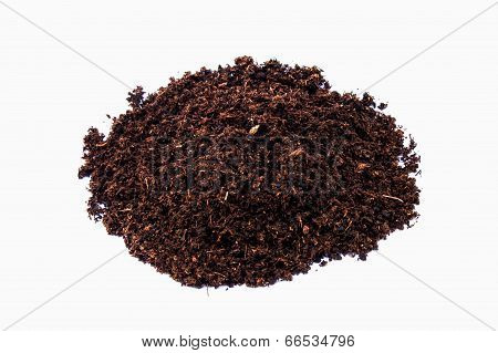 Soil Paet Moss On Isolated White Background