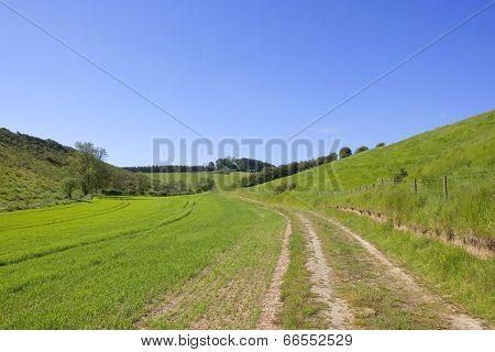 Rural Farm Track