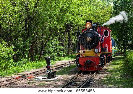 Steam Locomotive Going Through The Park