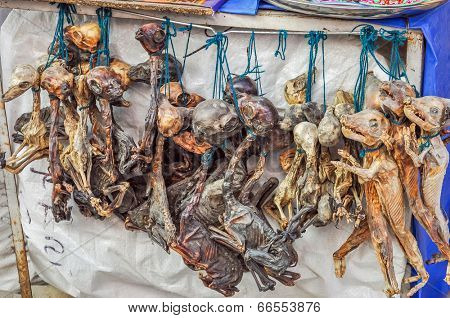 Dried animal fetuses as amulets, Witches Market, La Paz, Bolivia
