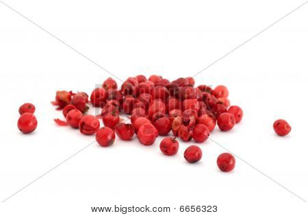 Red Peppercorn