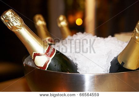 Cup With Ice And Champagne Bottles