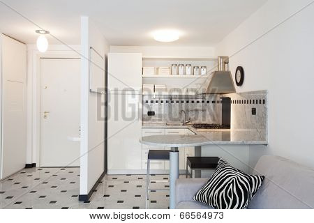 Interior of modern apartment, kitchen