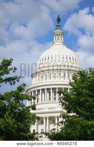 U.S. Capitol Building - Washington D.C.