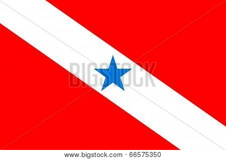 State flag of Para in Brazil.