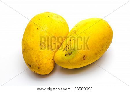 An Isolated Tropical Mango