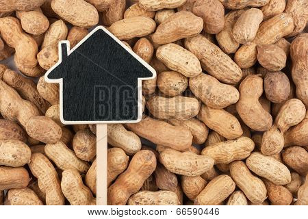 House Pointer, The Price Tag Lies On  Peanut