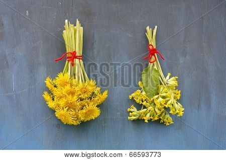 Two Spring Medical Healthy Flower Bunch On Blue Wall