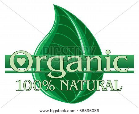 Organic Green Design With Leaf