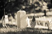 image of headstones  - Arlington National Cemetery with a flag next to each headstone during Memorial day  - JPG