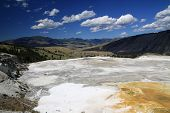 pic of mammoth  - Minerva Terrace at Mammoth Hot Springs in Yellowstone National Park - JPG