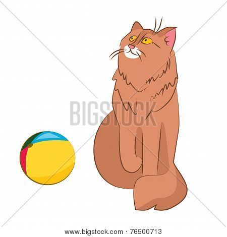 Cat And Ball - Opposition