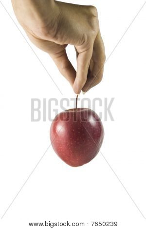 Apple in der hand