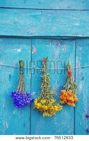 Three Medical Herbs Flower Bunch On Wooden Door