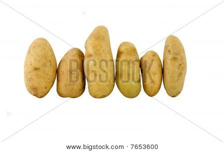 fresh fingerling potatoes