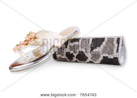 clutch purse & shoes