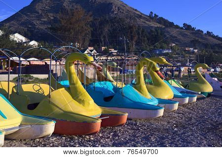 Swan Pedal Boats on Shore of Lake Titicaca in Copacabana, Bolivia