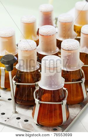 Flask On Shaker