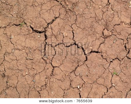 summer drought cracked soil