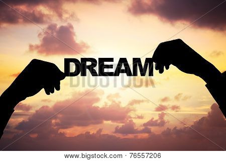 Silhouette Businessman's Hands Holding Dream During Sunset