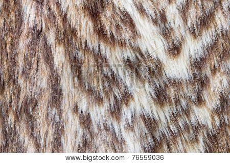 Leopard Or Wildcat Fur Background