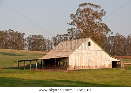 White Barn at Sunset