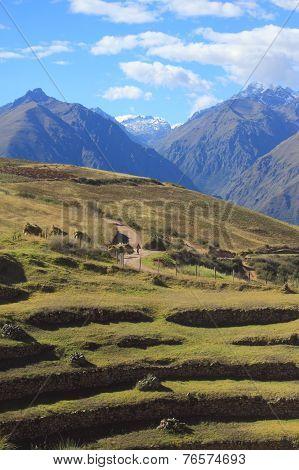 landscape near ancient Inca circular terraces at Moray