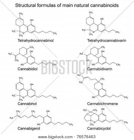 Chemical Formulas Of Natural Cannabinoids On White Background
