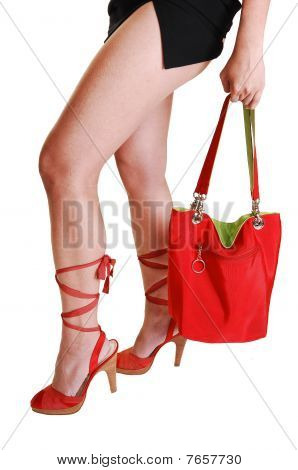 Woman Legs With Handbag.