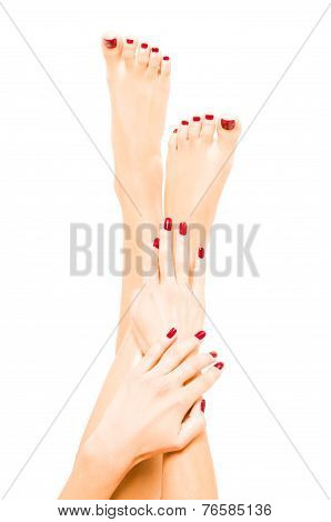Well-groomed female feet and hands