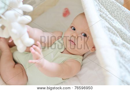Baby Playing Toys