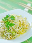 image of soybean sprouts  - salad with sprouts on the white plate - JPG