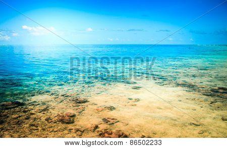 Tropical resort beach. Summer background