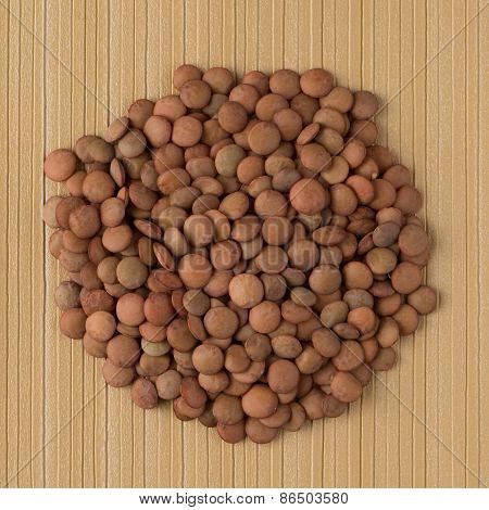Circle Of Lentils