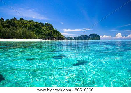 Nature And Nobody Serenity Shore