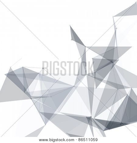 Black and White Mesh Vector Background | EPS10 Design