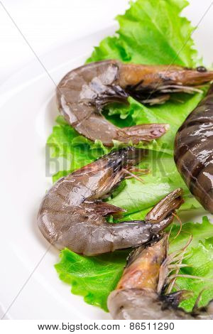 Raw shrimps on plate with lettuce and lemon.