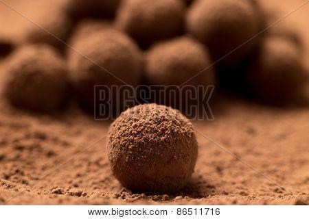Appetizing Black Chocolate Truffle
