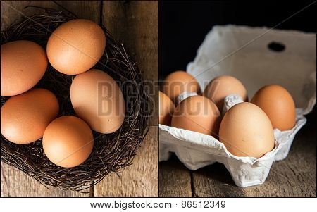 Compilation Of Fresh Eggs Images In Moody Natural Lighting Setting With Vintage Style
