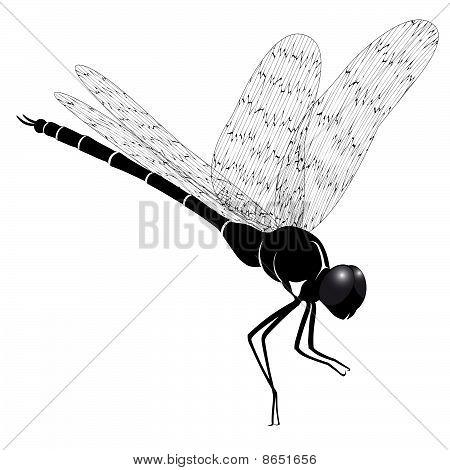 Dragonfly, tattoo