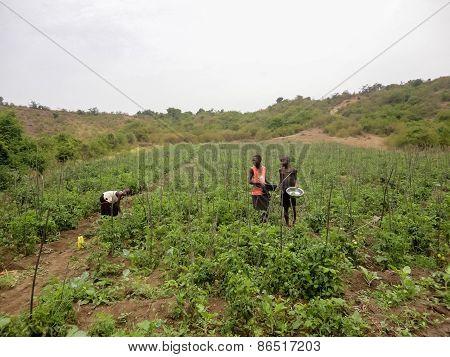 Rongo, Kenya