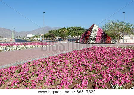 Flower Bed In Fujairah
