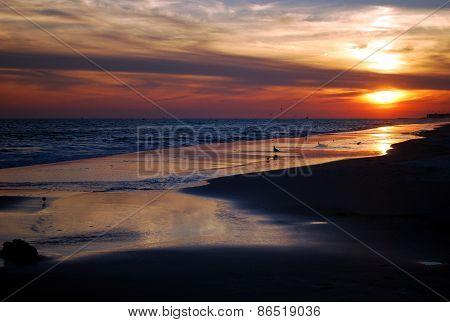 Spring Sunset in Florida