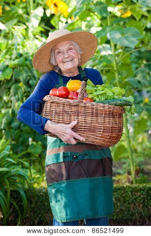 Happy Elderly Woman Holding Basket Of Vegetables