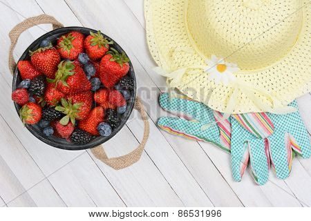 High angle shot of an old metal bucket of fresh picked berries on a rustic whitewashed wood table. A yellow sun hat and gardening gloves are next to the pail.