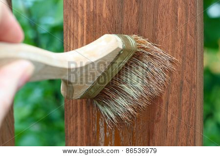 Applying Protective Varnish/paint To A Wooden Fence