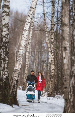 Young family walk in winter wood. Parent pulling sledge
