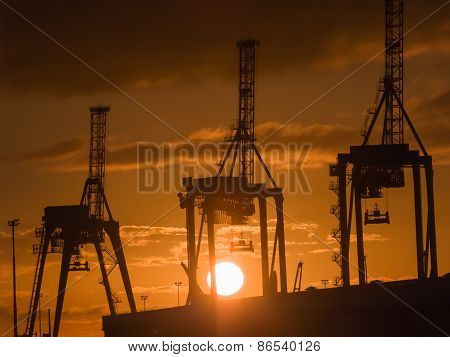 Three giraffe like container cranes silhouetted against rising sun.