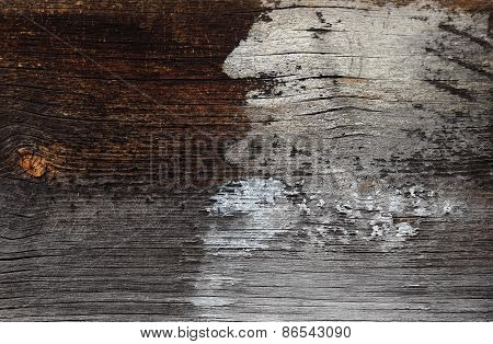 Painted old wood surface suggesting hidden images like man, animal head